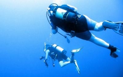 Diver03
