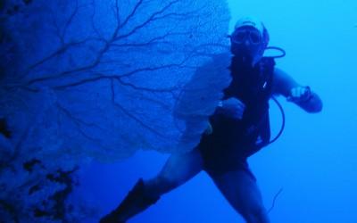 Diver08