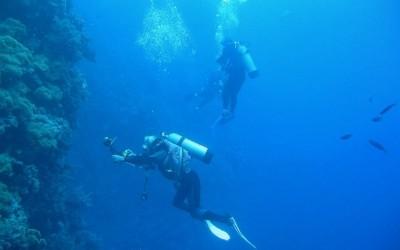 Diver13
