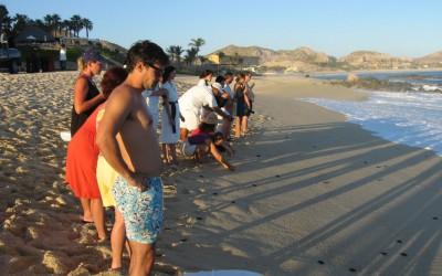 Mexico COE 2010 352
