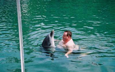 dolphin_hug